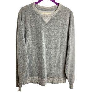 Hollister Gray Soft Velour Velvet CrewNeck Sweater